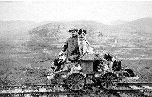 Walter W. Johnson on a dogmobile trip from Shelton to Nome Alaska, 1912. UAF-1980-68-243, John Zug Photo Album, University of Alaska Fairbanks Archives.