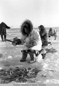 Women hooking tomcod on the ice, Point Hope, Alaska, circa 1955.  UAF-2001-129-44, Mary Cox Photograph Collection, University of Alaska Fairbanks Archives.