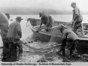 Seining for herring in Kodiak Harbor, 1919. Photo by Jasper Dean Sayre. UAA-hmc-0186-volume6-7495 National Geographic Society, Katmai Expedition Photographs, University of Alaska Anchorage Archives and Special Collections.