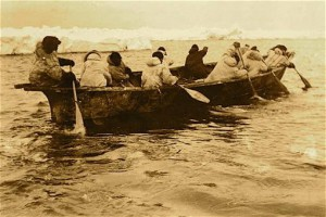 Paddling an umiaq (seal skin boat) in search of bowhead whales in the Bering Sea, circa 1905. UAF-1959-875-13, S.R. Bernardi Photographs, University of Alaska Fairbanks Archives.
