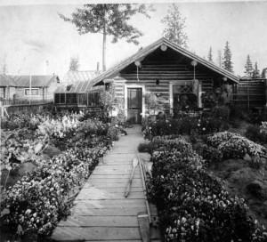 Log cabin and garden, Fairbanks, Alaska, circa 1910. UAF-1979-41-154, Falcon Joslin Papers, University of Alaska Fairbanks Archives.