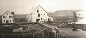 D.S.S. Company Cannery, Knik Arm, Cook Inlet, Alaska. Photo courtesy of Anjuli Grantham.