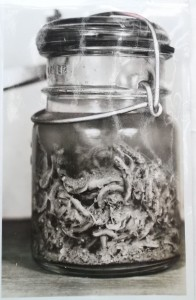 Jar containing 308 salmon fry removed from the stomach of a trout in Southeast Alaska, 1930. Photo courtesy National Archives.
