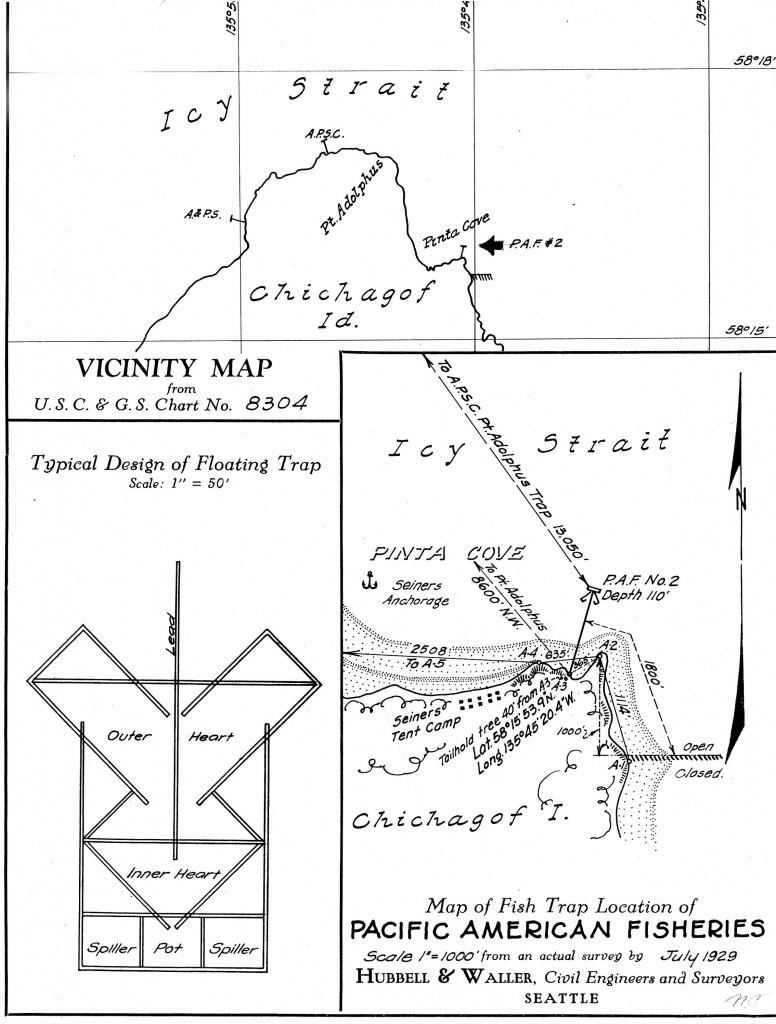 Pt Adolphus sketch