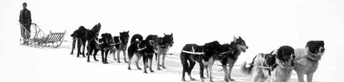 the future of alaska rogers george
